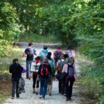 Fontainebleau Tourisme avait salué ce nouveau concept également :redécouvrir les bienfaits de la randonnée…