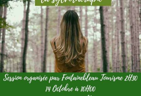 Il reste quelques places pour la nouvelle session de sylvothérapie organisée en Forêt de…