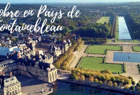 Découvrez notre newsletter spéciale Octobre en Pays de Fontainebleau. Nous vous proposons une sélection…