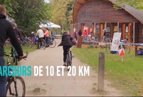 Fontainebleau Tourisme shared Département de Seine-et-Marne's post