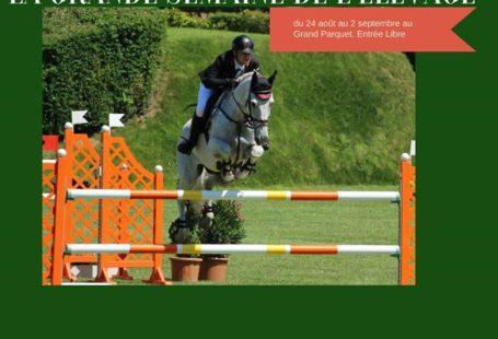 Une tradition au Grand Parquet, avec cette année, 1 850 chevaux de 2 à…
