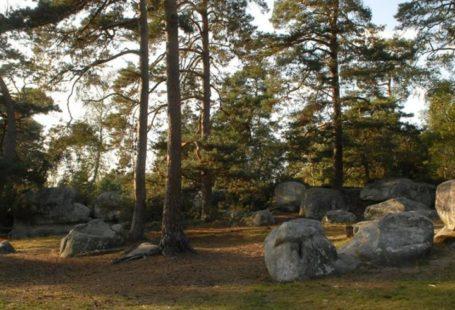 J'aime la forêt, je la respecte ! Malgré les quelques pluies récentes, le risque…