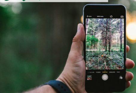 Découvrez la forêt autrement grâce à votre téléphone : avec Balade Branchée ! Cette…