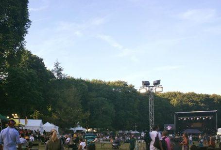 Le Festival Django Reinhardt : des concerts avec des artistes de renom mais aussi…