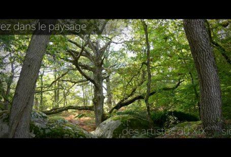 Fontainebleau Tourisme vous souhaite une très belle année 2019. MERCI, aux visiteurs français et…