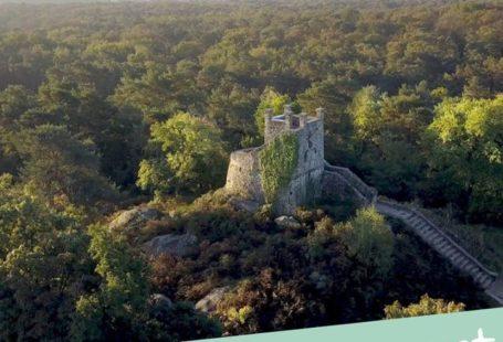 La tour Denecourt, vous connaissez ? Elle a été construite par Claude-François Denecourt, le…