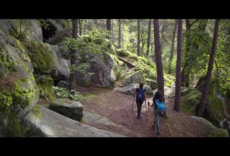 Fontainebleau Tourisme added a cover video