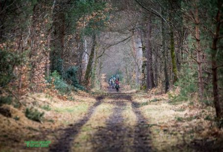 La Forêt de Fontainebleau et ses grandes allées sont idéales pour des compétitions mais…