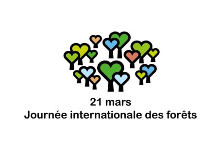 Fontainebleau Tourisme shared Journée Internationale des Forêts's post