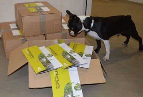 Lucky a réceptionné aujourd'hui notre nouvelle brochure groupes Comme lui n'hésitez pas à jeter…