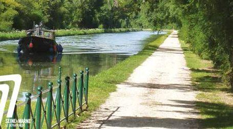 De belles sorties en vélo en perspective dans la #forêt de #Fontainebleau