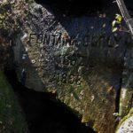 Dimanche 17 Septembre, participez à la protection de la forêt de Fontainebleau en prêtant…