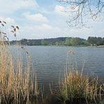 Fontainebleau Tourisme shared Office national des forêts's post