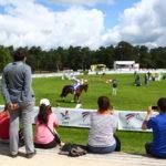 Fontainebleau Tourisme shared Fontainebleau – Le Grand Parquet's post