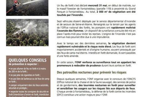 Fontainebleau : incendie de forêt, l'ONF rassure et précise En réponse à un feu…