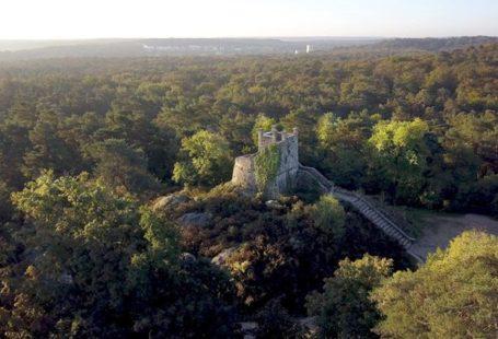 ️ retient la Forêt de Fontainebleau comme destination à faire à deux. Il n'est…