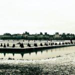 Février, Romance en Pays de Fontainebleau. Le mois de Février est sous le signe…