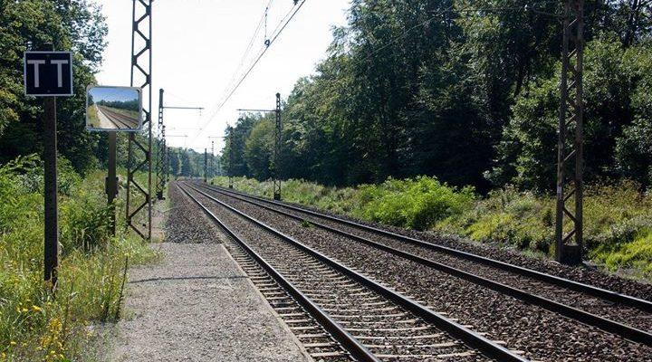 Profitez du week-end pour vous arrêter directement à l'arrêt Forêt de Fontainebleau! A moins…