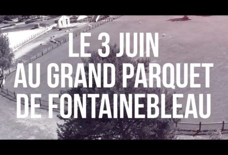 Fontainebleau Tourisme shared a video