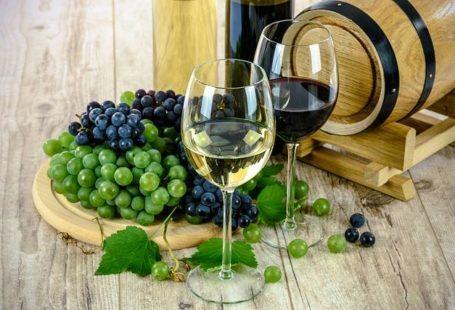 #SORTIE : Ce mardi 21 mars, profitez d'une dégustation de vins et fromages à…