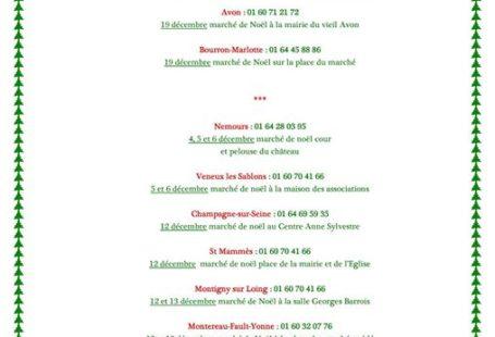 Retrouvez les dates des marchés de Noel au Pays de Fontainebleau et ses alentours…