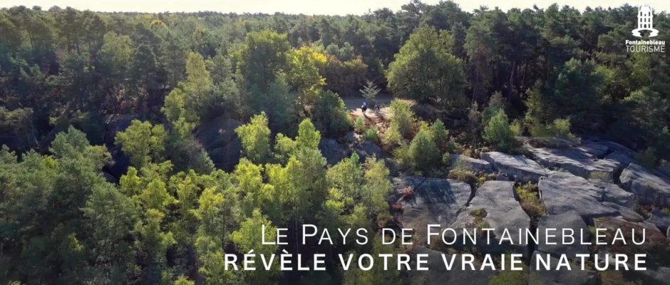 Destination Equestre d'Exception! Découvrez la richesse du Pays de Fontainebleau, un territoire où le…