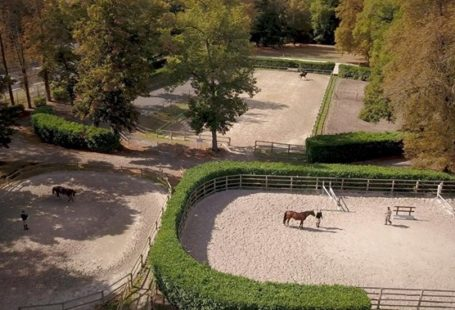 Vous avez été nombreux samedi dernier à découvrir l'Ecole Militaire d'Equitation, son histoire, ses…