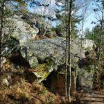 Éloge de la forêt de Fontainebleau par Enlarge your Paris! 22 000 hectares de…