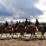 Retour en images sur un week-end marqué par l'excellence équestre à Fontainebleau, capitale du…