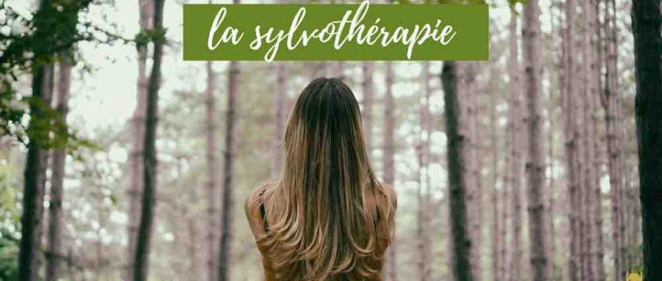 Rependre sa respiration et un peu de fraîcheur en forêt de Fontainebleau. Deux sessions…