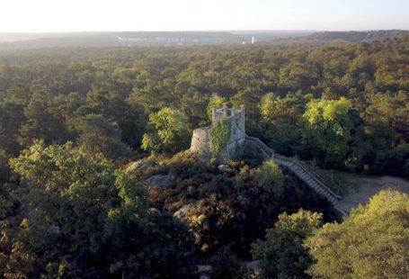Un week-end pour de belles balades en forêt de Fontainebleau. Une variété de balades…