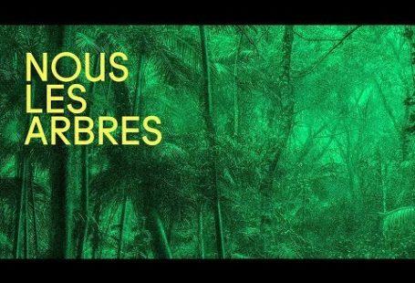«Nous les Arbres». Une exposition à la Fondation Cartier, Paris (14ème). Réunissant une communauté…