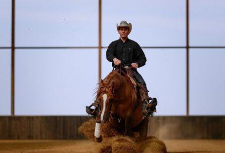 Destination Equestre d'Exception Août/Septembre. Bienvenue en Pays de Fontainebleau. 2 évènements majeurs ouverts au…