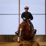 Destination Equestre d'Exception Août/Septembre. 2 évènements majeurs ouverts au grand public: – La «Grande…