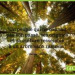 Fontainebleau Tourisme shared GEO France's photo