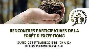 L'ONF invite les habitants à participer au contrat de projet « Fontainebleau, Forêt d'Exception®…