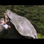 Un week-end d'été en forêt de Fontainebleau