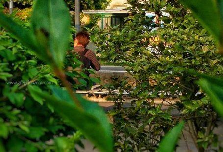 Fontainebleau Tourisme shared Greg Clouzeau Photo et FontaineBleau passion's post