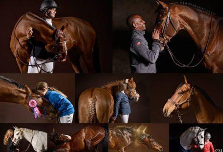 Fontainebleau Tourisme shared BIP – Bonneau International Pony's post