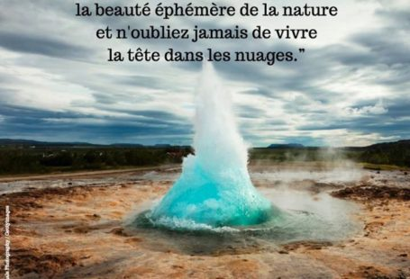Fontainebleau Tourisme shared GEO France's post