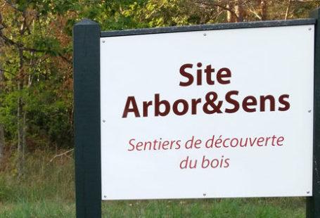Fontainebleau Tourisme shared a link