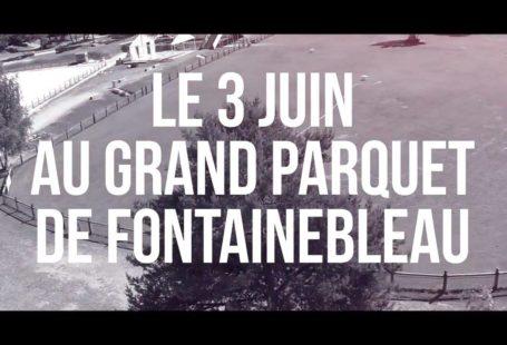 Fontainebleau Tourisme shared Retour aux Sources Fontainebleau's video