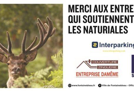 L'Office de Tourisme du @PaysdeFontainebleau a eu le grand plaisir d'accueillir lors du week-end…