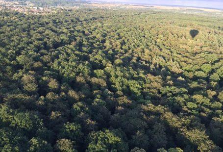 La forêt de Fontainebleau vue du depuis une Montgolfière !