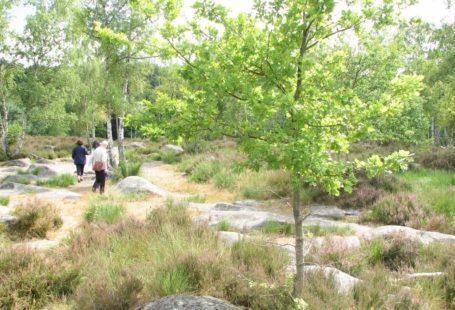 ** INFOS ** Faites attention en forêt de Fontainebleau ce week-end : suite aux…