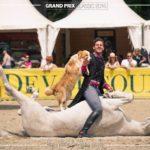 Week end au top au Grand Parquet ! #fontainebleau #paysdefontainebleau #grandparquet #dansle77 #santiserra