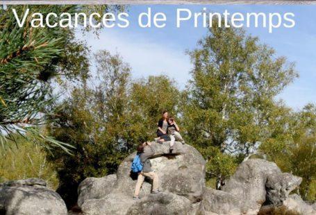 Les Vacances de printemps commencent en Pays de Fontainebleau. Voici une sélection d'activités, d'expositions,…