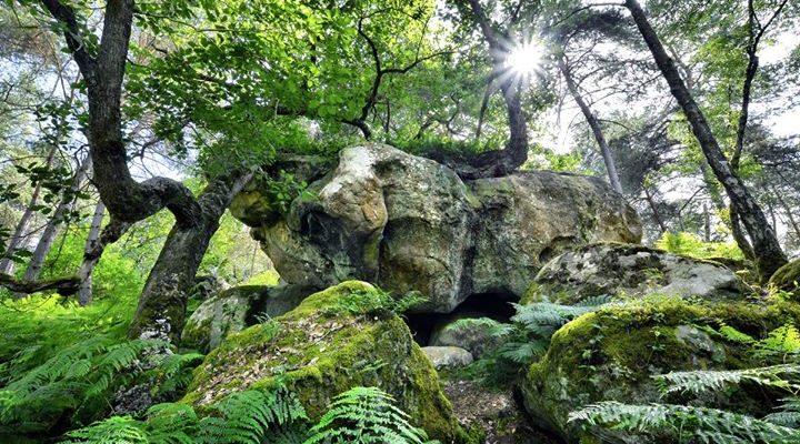 Des activités Nature pour prolonger les vacances ce week-end. 3 jolis moments à vivre…