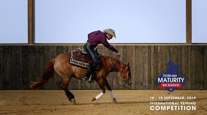 Compétition Internationale de Reining Du 10 au 15 septembre, le BO Ranch vous accueille…